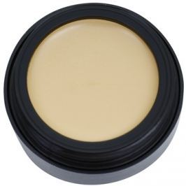 Catrice Camouflage krycí make-up odtieň 020 Light Beige 3 g