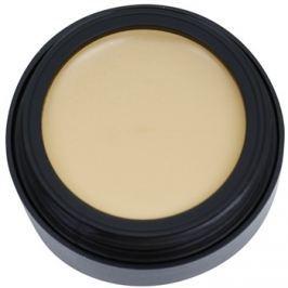 Catrice Camouflage krycí make-up odtieň 020 Light Beige 3 g