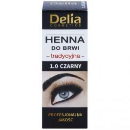 Delia Cosmetics Henna farba na obočie odtieň 1.0 Black 2 g + 2 ml