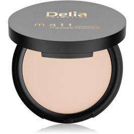 Delia Cosmetics Matt púder odtieň 01 Transparent 8 g