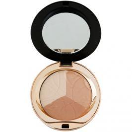 Eveline Cosmetics Celebrities Beauty zmatňujúci púder s minerálmi odtieň 204 Shimmer  9 g