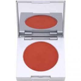 Kryolan Basic Face & Body kompaktná tvárenka so štetcom a zrkadielkom odtieň Shading Brown 8,5 g