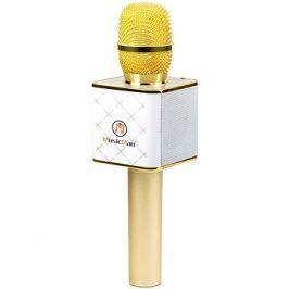 Technaxx BT-X31 Karaoke Mikrofon