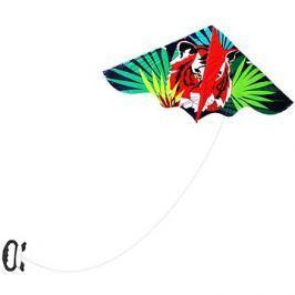 Rappa drak létající Tygr