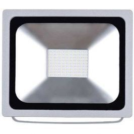EMOS LED REFLEKTOR 50W PROFI