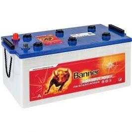 BANNER Energy Bull 96801, 12V - 230Ah