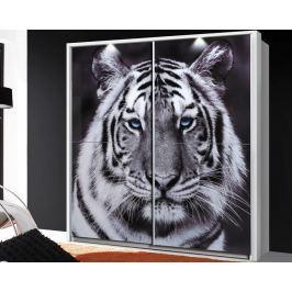 Yanis, s motivom tigra