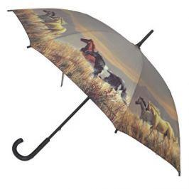 Blooming Brollies Dámsky palicový dáždnik Band Of Horses ARBANDH