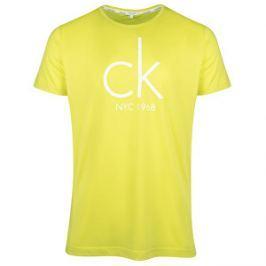 Calvin Klein Pánske tričko Relaxed Crew Tee KM0KM00189 Sulphur Spring S