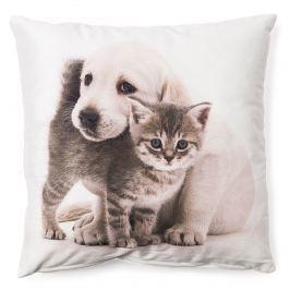 BO-MA Trading Obliečka na vankúšik Šteňa a mačiatko maznáčikovia 6, 40 x 40 cm