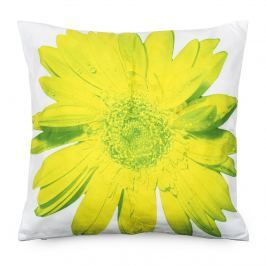 BO-MA Trading Obliečka na vankúšik zelený kvet, 45 x 45 cm