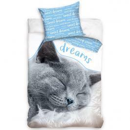 Carbotex Bavlnené obliečky Mačička - Sweet Dreams blue, 140 x 200 cm, 70 x 90 cm