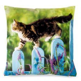 BO-MA Trading Obliečka na vankúšik Mačka na plote, 40 x 40 cm